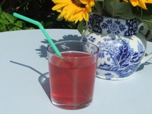 Cranberry cooler