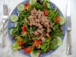 Juicy salad lunch with tuna